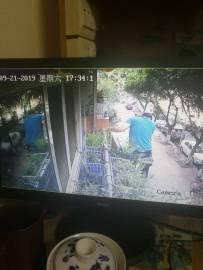 监控又发现有人登上阳台
