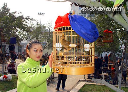 2004-2-11日:广汉纪实思春风-2004年-美女-被的烧死往事图片